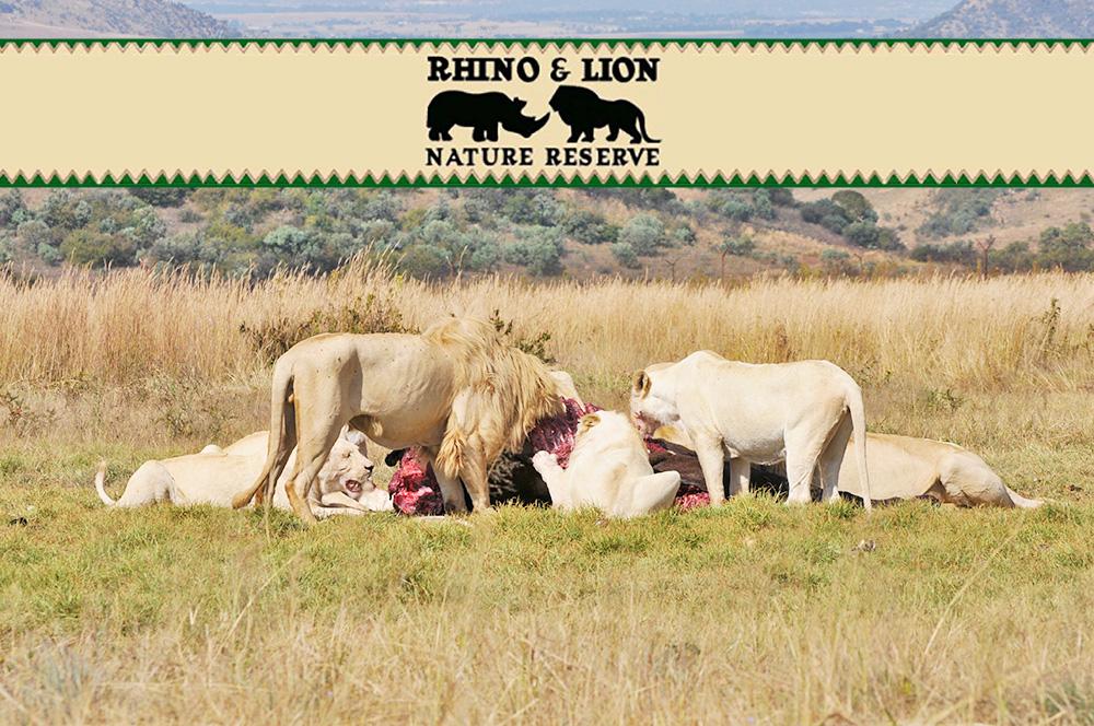Rhino & Lion Nature Reserve